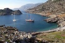 arap island