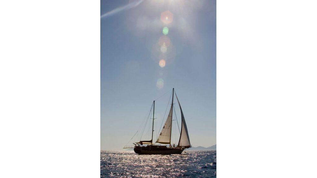 Aegean Schatz (19)