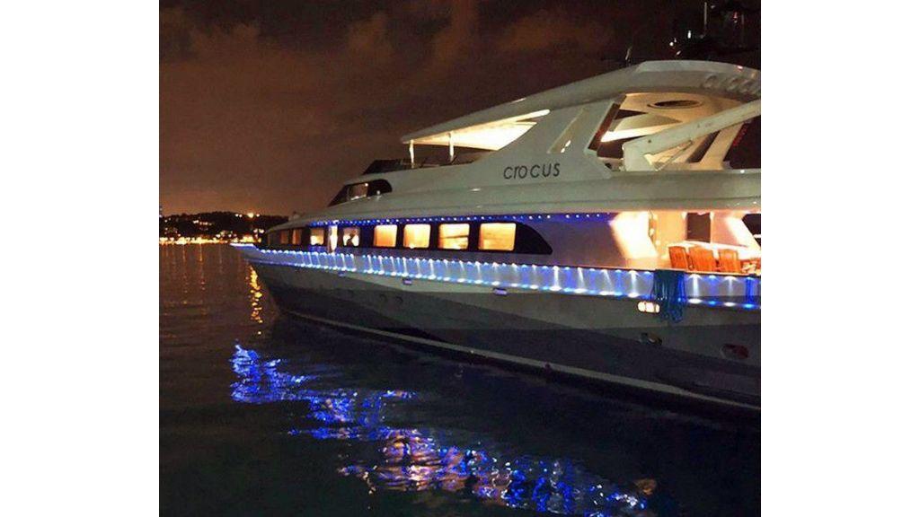 Crocus motor yacht (2)