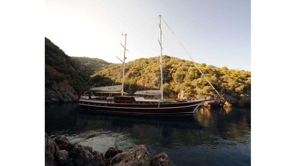 Dear Lila Yacht for charter