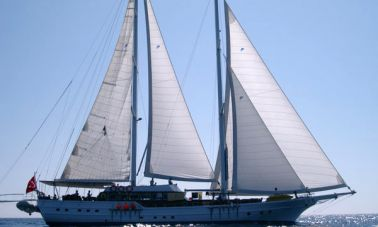 Turkish_Charter_Yacht_for_Sale (6)