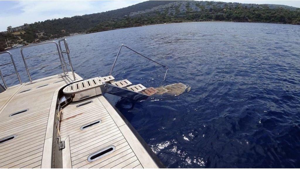 Trawler Motor Yacht (2)