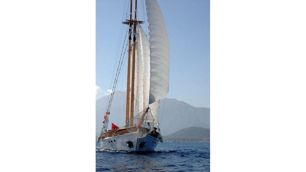 classic-schooner-for-sale (57)