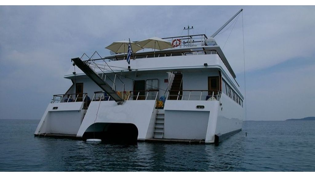 Cruising Catamaran for Sale (8)