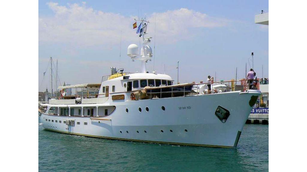 Sophisticated luxury yacht (10)