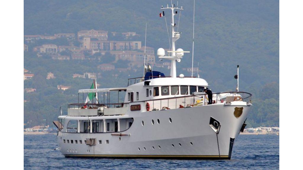 Sophisticated luxury yacht (15)
