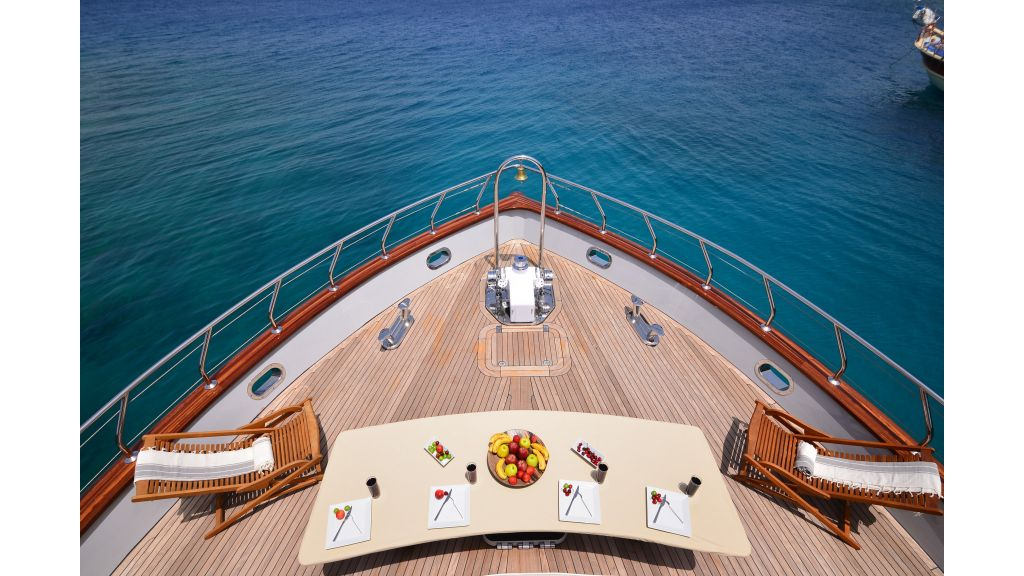Custom Design Trawler 26 M For Sale (15)