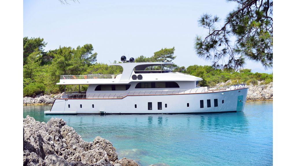 Custom Design Trawler 26 M For Sale (31)