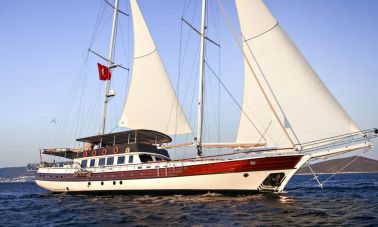 20 Pax Gulet For Sale master