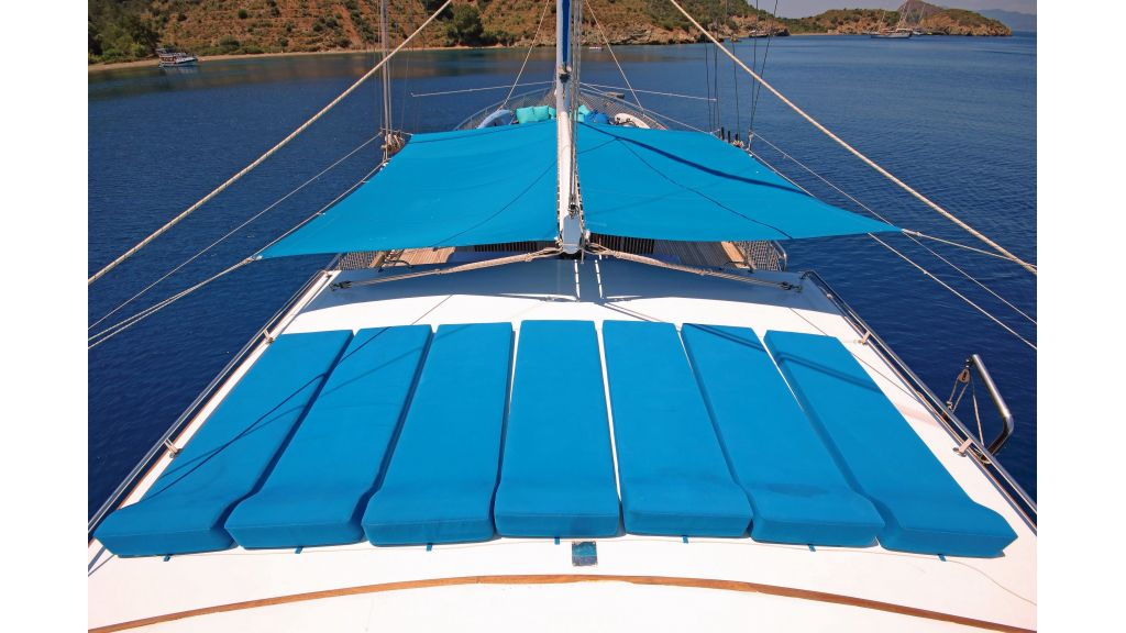 Aleyna 3  charter gulet (13)