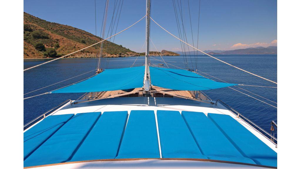 Aleyna 3  charter gulet (14)