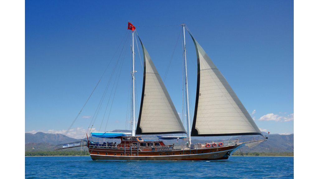 Aleyna 3  charter gulet (64)