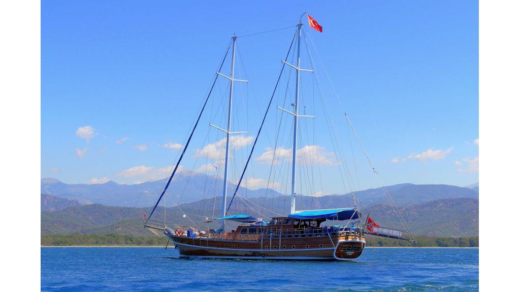 Aleyna 3  charter gulet (65)