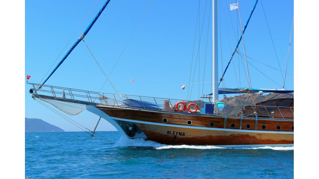Aleyna 3  charter gulet (69)