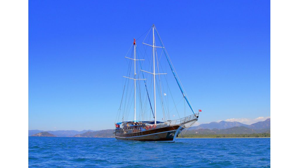 Aleyna 3  charter gulet (70)