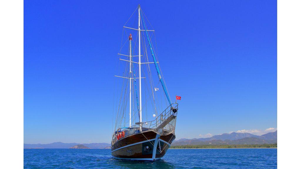 Aleyna 3  charter gulet (71)