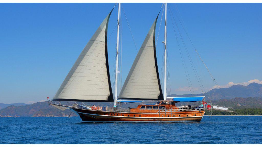 Aleyna 3  charter-gulet