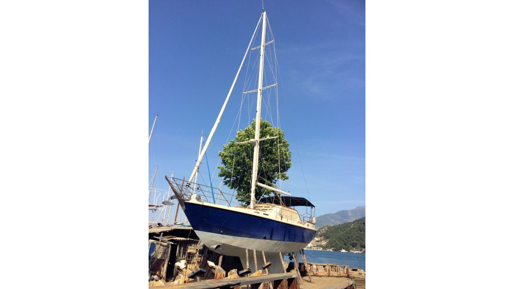 Steel Sailing Yacht (7)