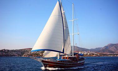 Blue Cruise (1)