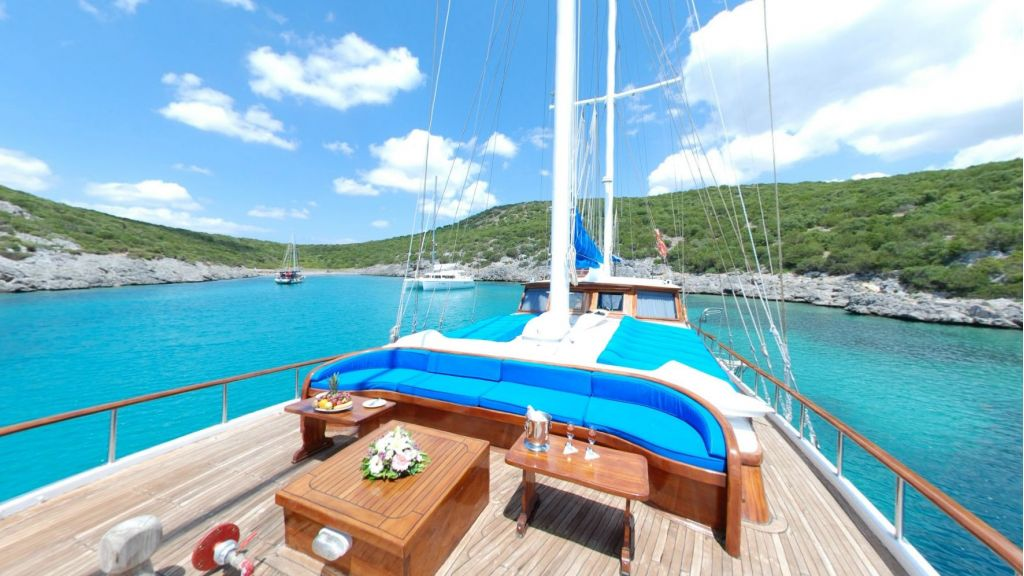 Blue Cruise (5)