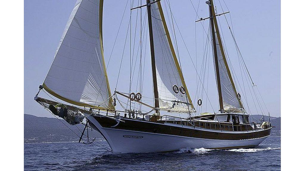 Seyma Kaptan (1)