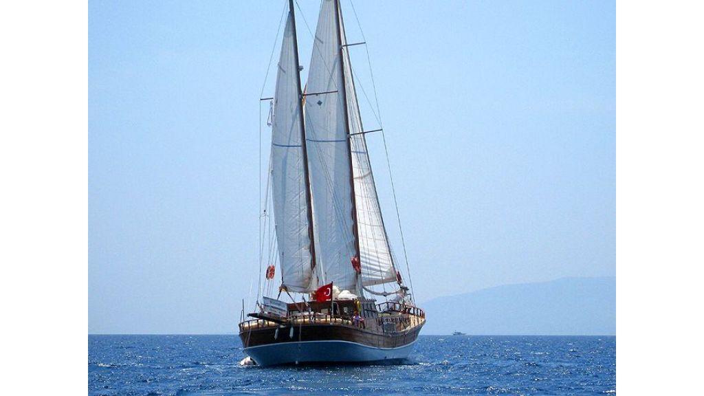Seyma Kaptan (11)