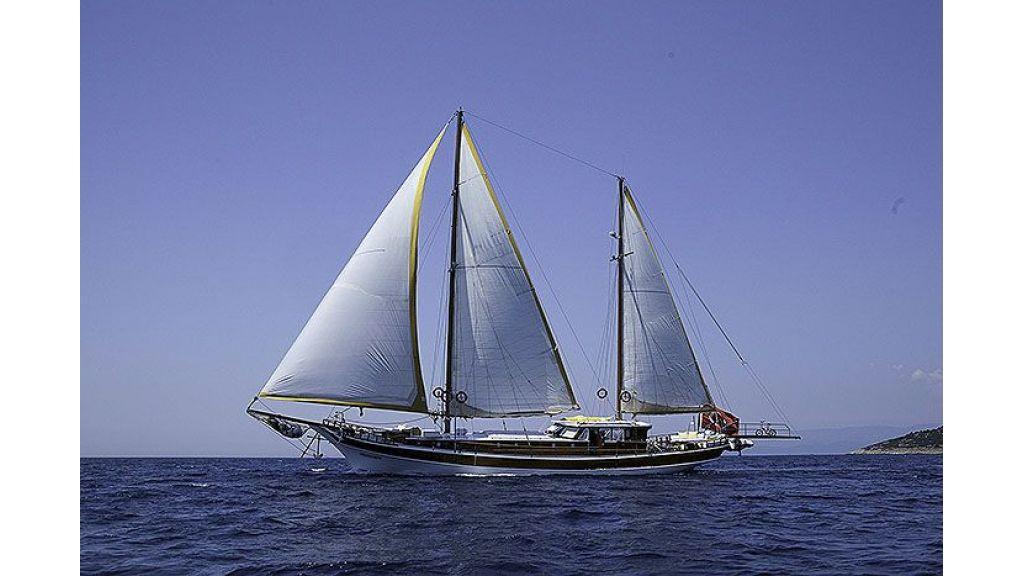 Seyma Kaptan (6)