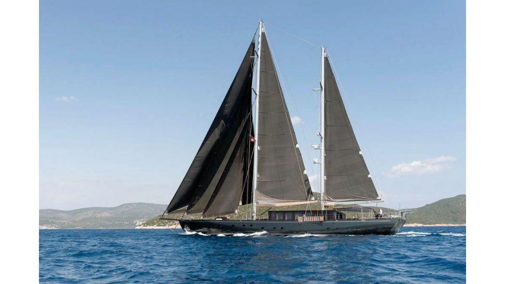 Pro Sailing Yacht (21)
