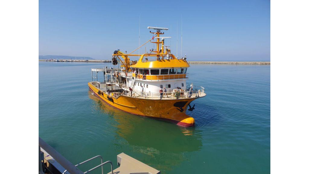 Large fishing vessels (8)
