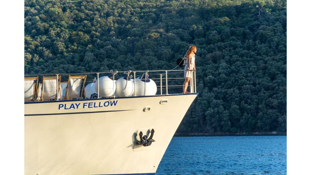 Play Fellow Motor Yacht (9)