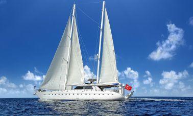 Flybridge Motor Sailing (7)