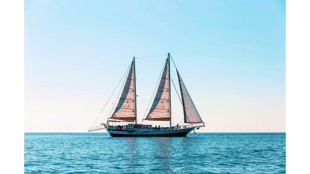 Derya Deniz Gulet (7)