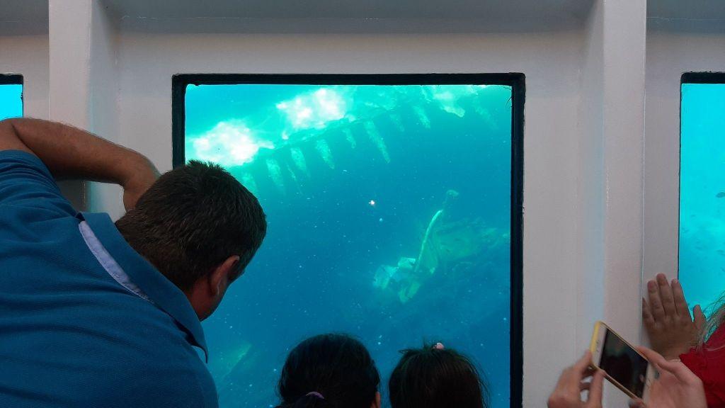 Glass Bottom Submarine (60)