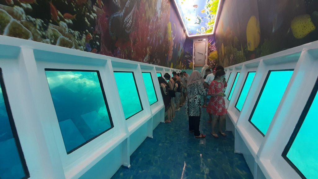 Glass Bottom Submarine (64)