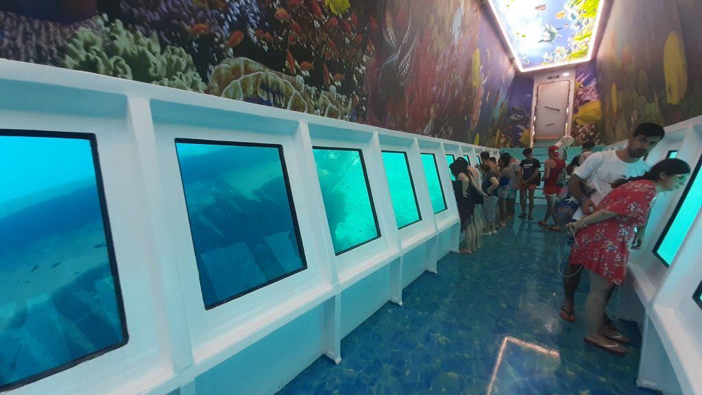 Glass Bottom Submarine (65)