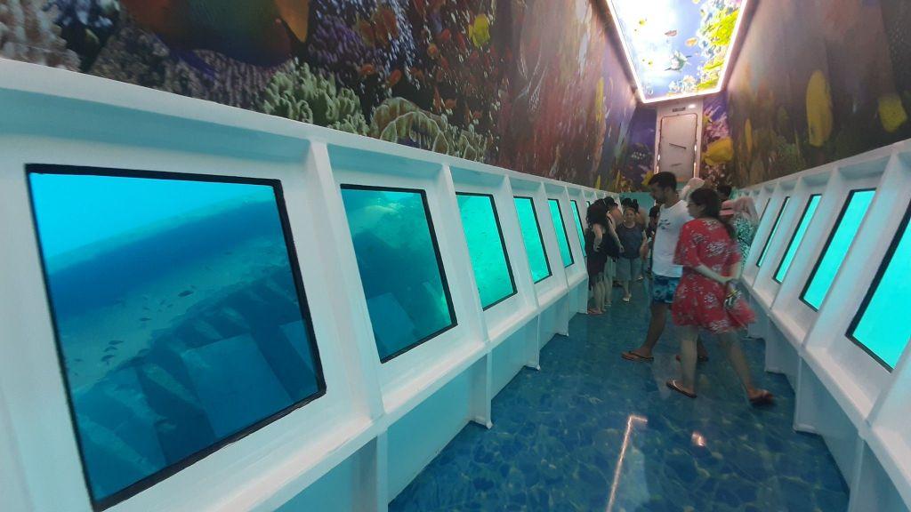 Glass Bottom Submarine (66)