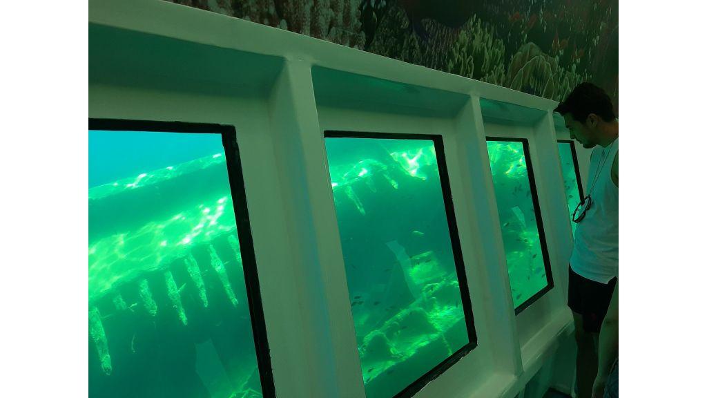 Glass Bottom Submarine (69)