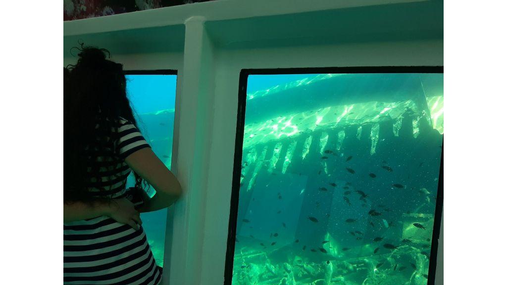 Glass Bottom Submarine (70)