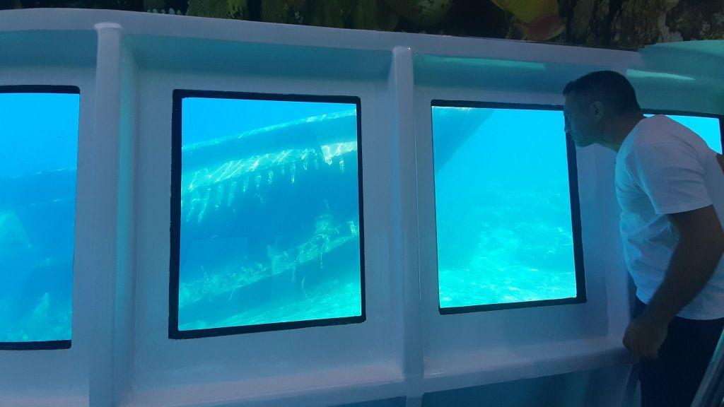 Glass Bottom Submarine (75)