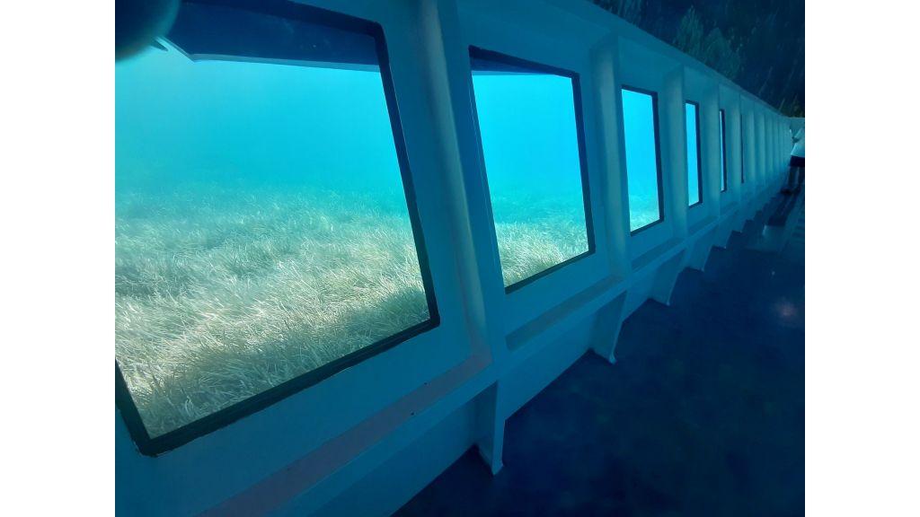 Glass Bottom Submarine (76)